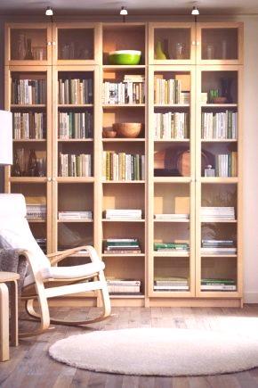 Regał Ikea Stojak Ze Szklanymi Drzwiami I Półkami Modele Z