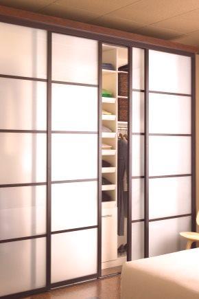 Drzwi Przesuwne Do Garderoby 82 Zdjęcia Lustro Opinie Na