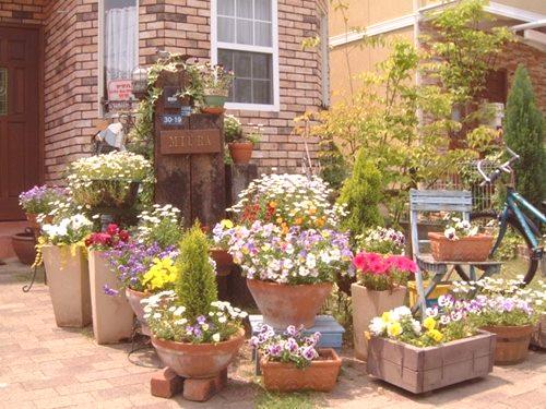 Uliczne Doniczki Na Kwiaty Własnymi Rękami 84 Zdjęcia